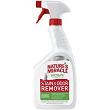 Best Carpet Stain And Odor Remover Cleaner Homes