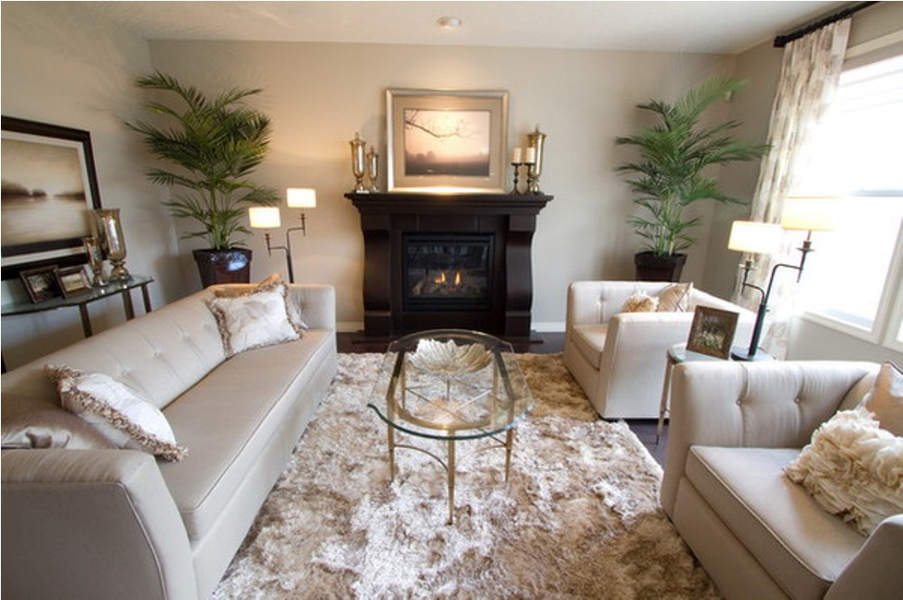 . How To Choose Living Room Carpet   Cleaner Homes