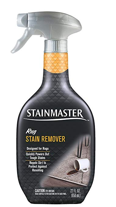Best Rug Stain Remover Cleaner Homes